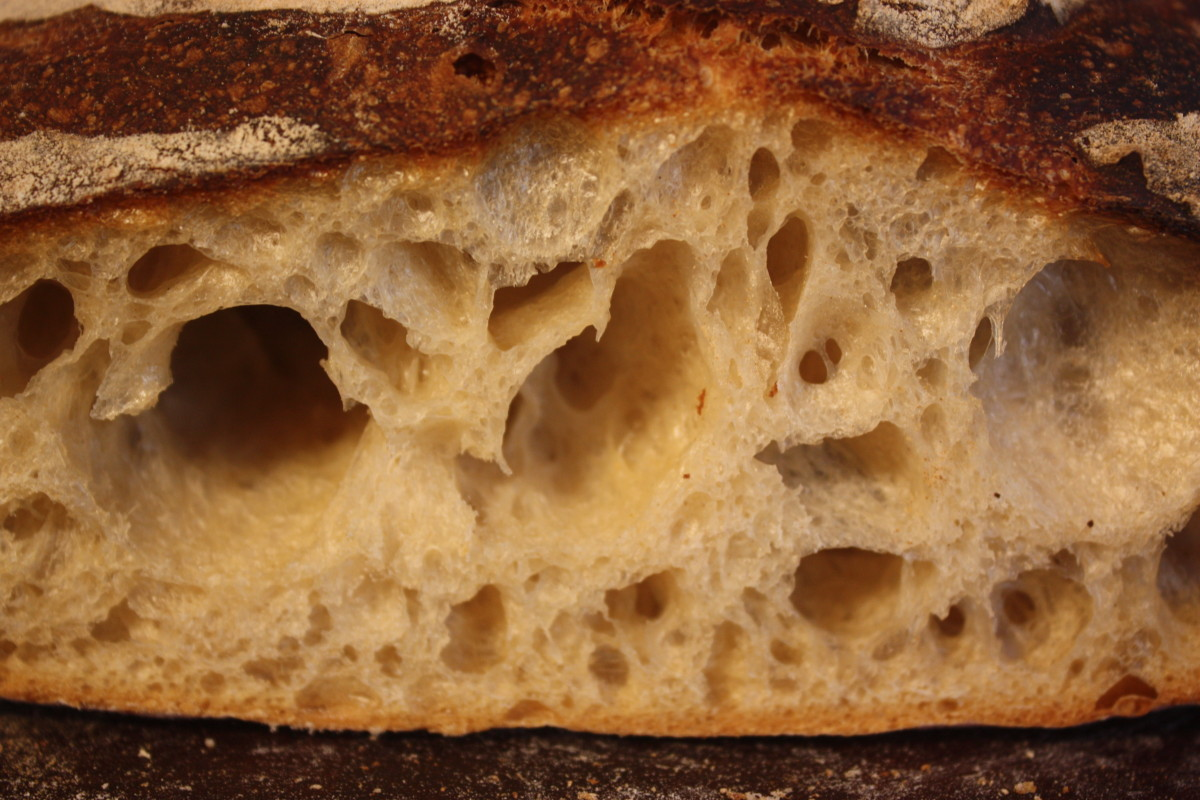 April 22 sourdough boule crumb