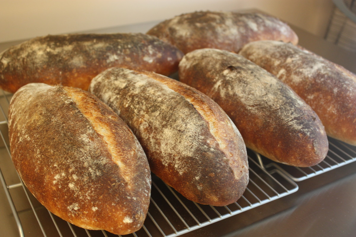 SFBI sourdough batards