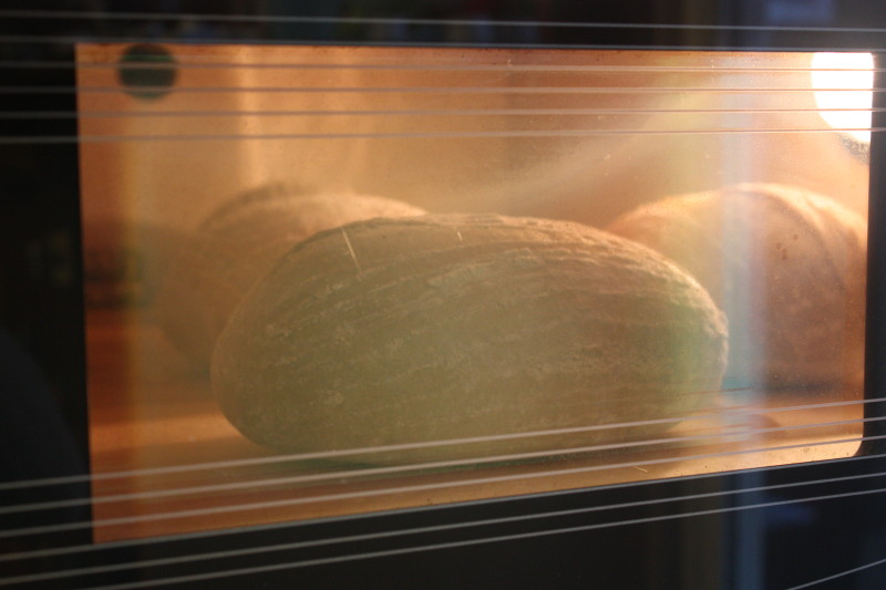 bread in a haussler oven