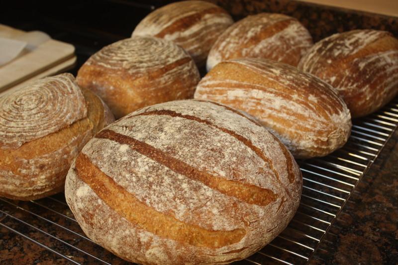 bread in a haussler oven