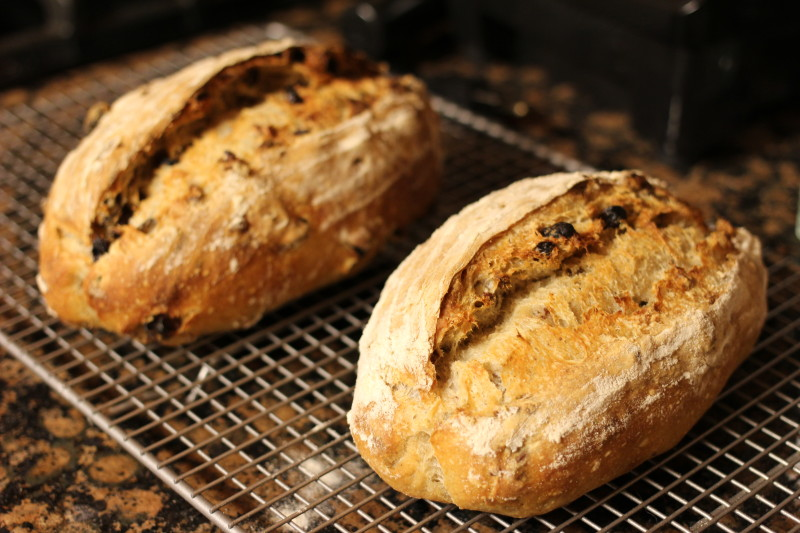 raisin pecan sourdough